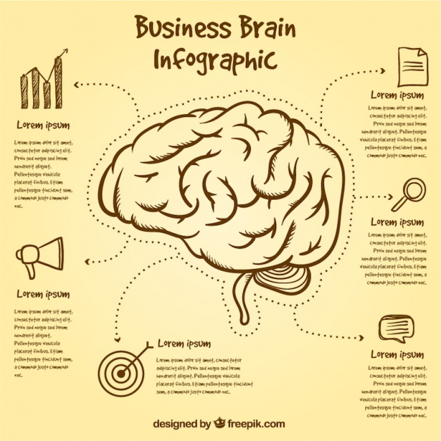 brain-infographic-template-with-hand-drawn-items_23-2147588184