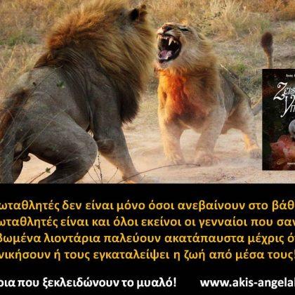 Ζήσε λιονταρίσια!