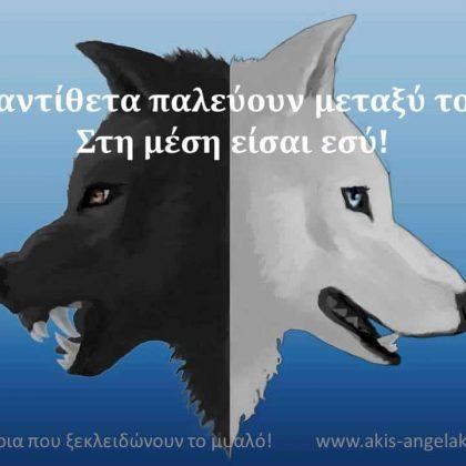 Ο ΕΛΑΤΤΩΜΑΤΙΚΟΣ ΕΑΥΤΟΣ